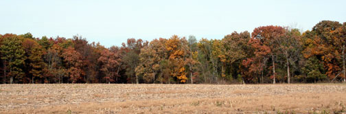 Missouri Hunting