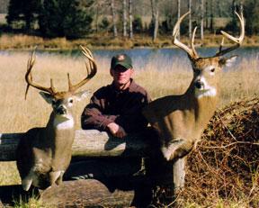 Deer Mounts